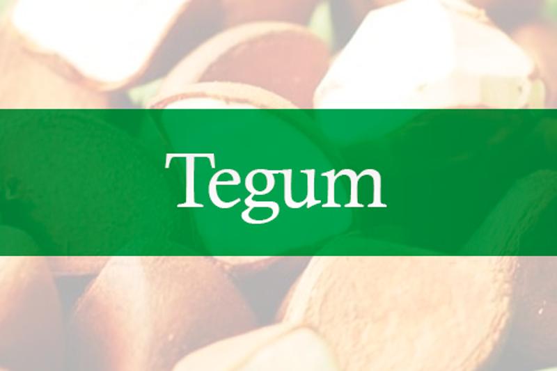 Tegum